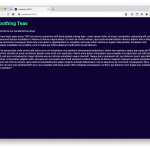 Global vs. Local Styling In Next.js